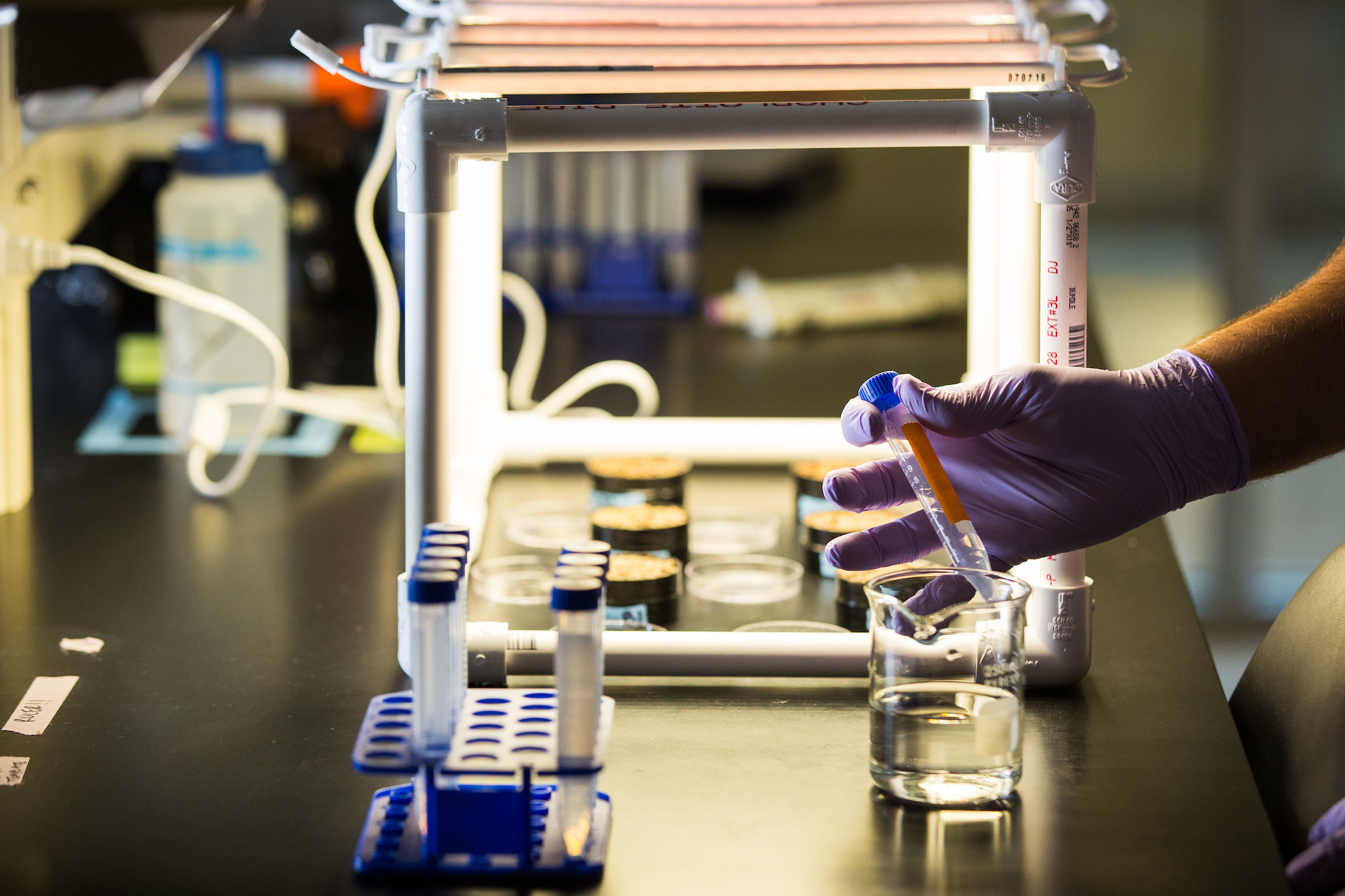 ASU rises in national research rankings | ASU Now: Access