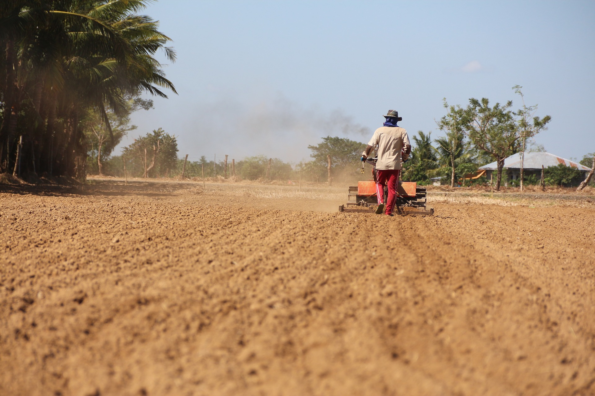 Study looks at land acquisitions' effect on climate change - ASU Now