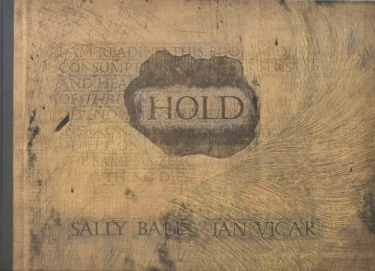 Cover of Hold by Sally Ball and Jan Vicar