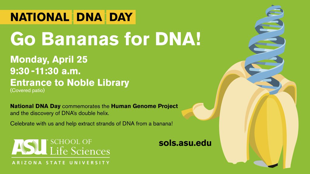 dna day essay contest