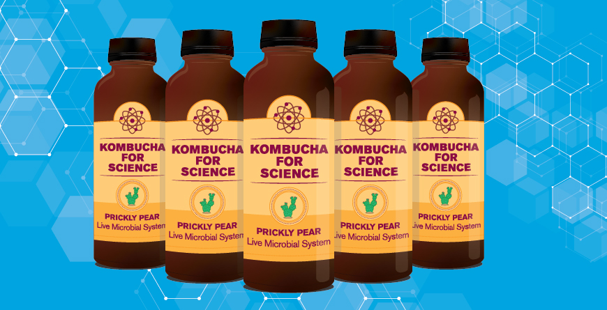 Kombucha culture | ASU Now: Access, Excellence, Impact