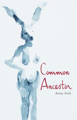 Cover of Common Ancestor by Jenny Irish