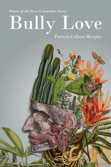 Cover of Bully Love by Patricia Colleen Murphy