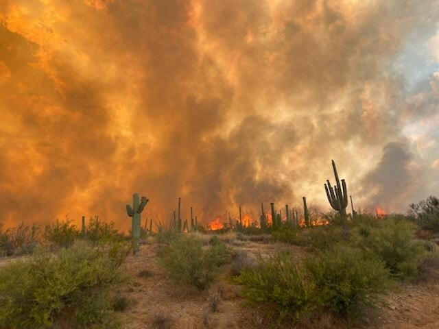 A wildfire burns in the Arizona desert
