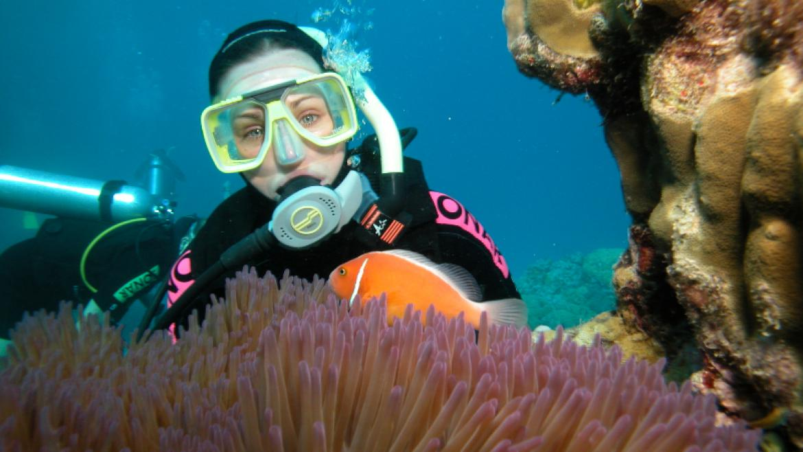A scuba diver in the Great Barrier Reef