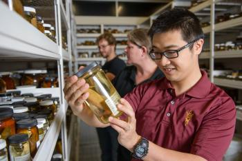 ASU Natural History Collections