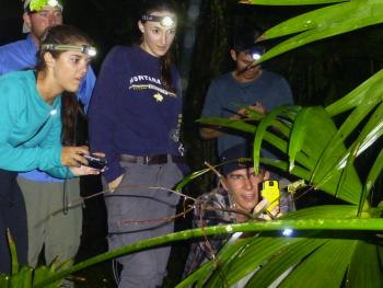 students find a frog while on a nighttime excursion