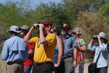 SOLS faculty lead hikers around the Riparian Preserve at Water Ranch in Gilbert