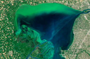 Phosphorus runoff can cause harmful algal blooms that endanger wildlife and business in areas like the Great Lakes region. Image courtesy: NASA.