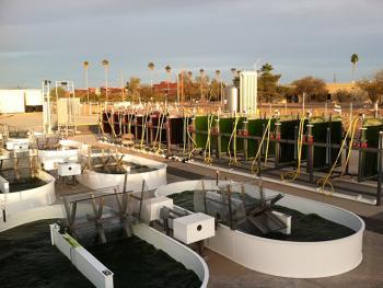 AzCATI algae ponds