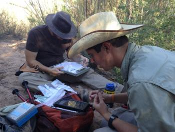 researchers using mobile app in the field