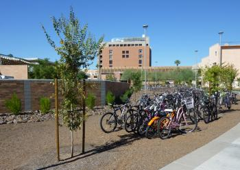 A rack filled with bicycles.