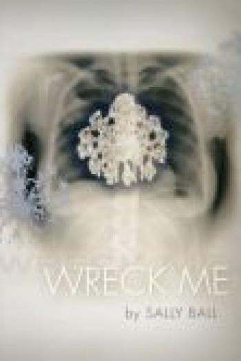 "cover art for the book ""Wreck Me,"" by Sally Ball"