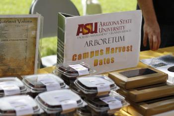 ASU campus harvest dates