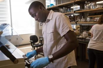 Manneh lab work