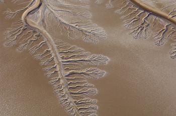 dry river delta