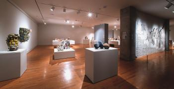 "Installation shot from ""Crafting a Continuum: Rethinking Contemporary Craft"" (2013)"