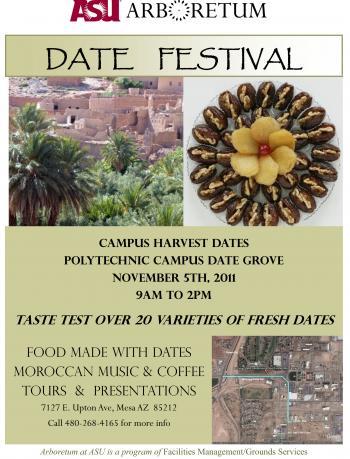 date festival flyer