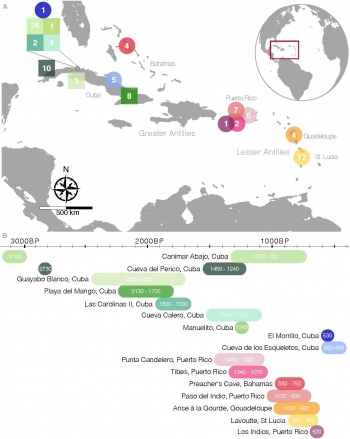 Figure Showing Caribbean Sites Discussed in the Research