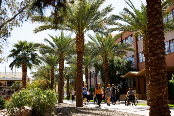 Students travel along Palm Walk