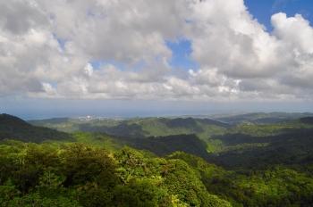 Ana Magdalena Hurtado NBC News Article Jungle Landscape