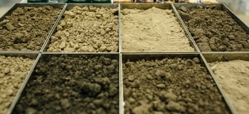 ASU study shows carbon sequestration