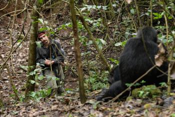 ASU graduate student Joel Bray observes chimpanzees in Tanzania.