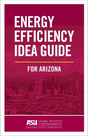 front cover text of energy efficiency guide in white and maroon