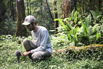 hoefer collecting sample sounds in rainforest