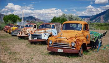 Keep on Trucking (photo by Bob Estrin)