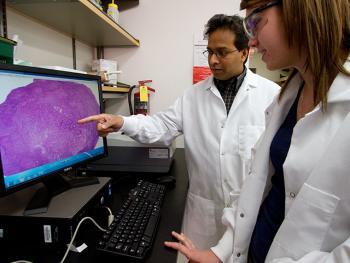 Kodibagkar biomedical research