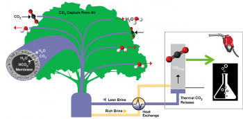 diagram of new low-cost carbon capture concept