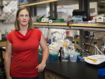 Sarah Stabenfeldt in lab