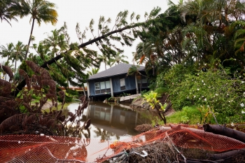 Image of severe flooding and damaged trees with blue house sinking into floodwater