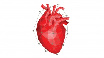 Graphic of a heart made of polygons and interconnected lines.