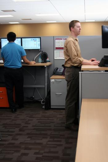 ASU employees working at their sit and stand workstations.
