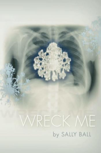 "Poet Sally Ball will read from her new collection, ""Wreck Me."""
