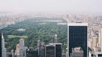 buildings in New York City with Central Park in the background