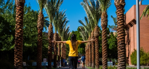 asu  student walking down palm walk on a sunny day
