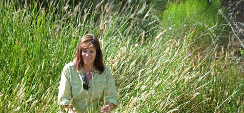 ASU urban ecologist Nancy Grimm