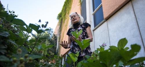 Deborah Thirkhill ASU gardening class