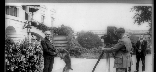 President Warren Harding and his airedale Laddie Boy