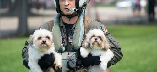 A Navy pilot helps rescue dogs from a Houston-area pet shelter after Hurricane Harvey