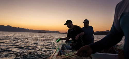 Fishermen are silhouetted by the setting sun on bay water