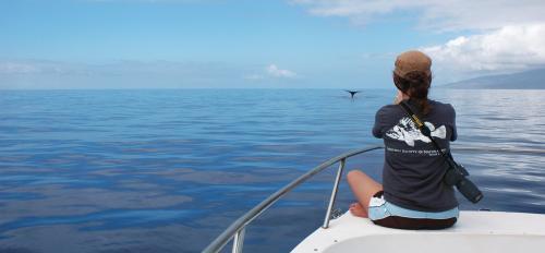 ASU biodiversity expert Leah Gerber observes whales.