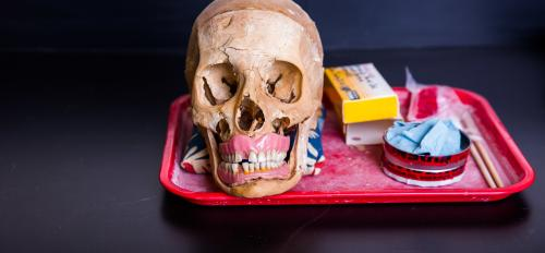 skull and forensic equipment on a tray