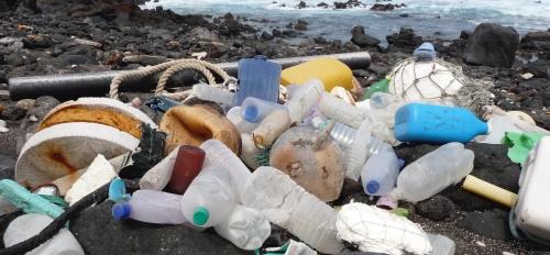 ascension island plastic pollution