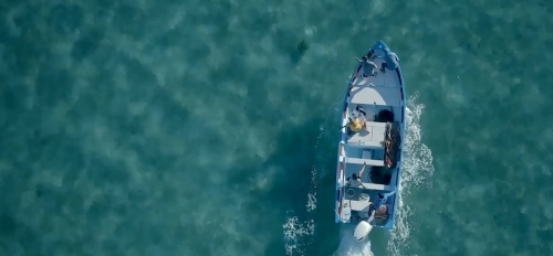 An aerial photo of a boat on the ocean tracking turtles