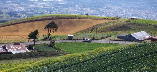 Farming field in Costa Rica