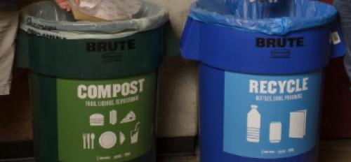 compost and recycle bins